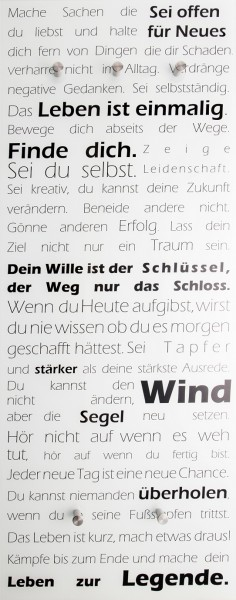 "Spiegelprofi 76015014 Glasgarderobe FELIX Glasgarderobe ""Motivation"", 50x125x6 cm, Garderobe,"