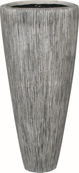 Vase Ray